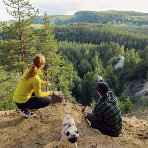 Two people and a dog out trekking, pauses and looks at the view