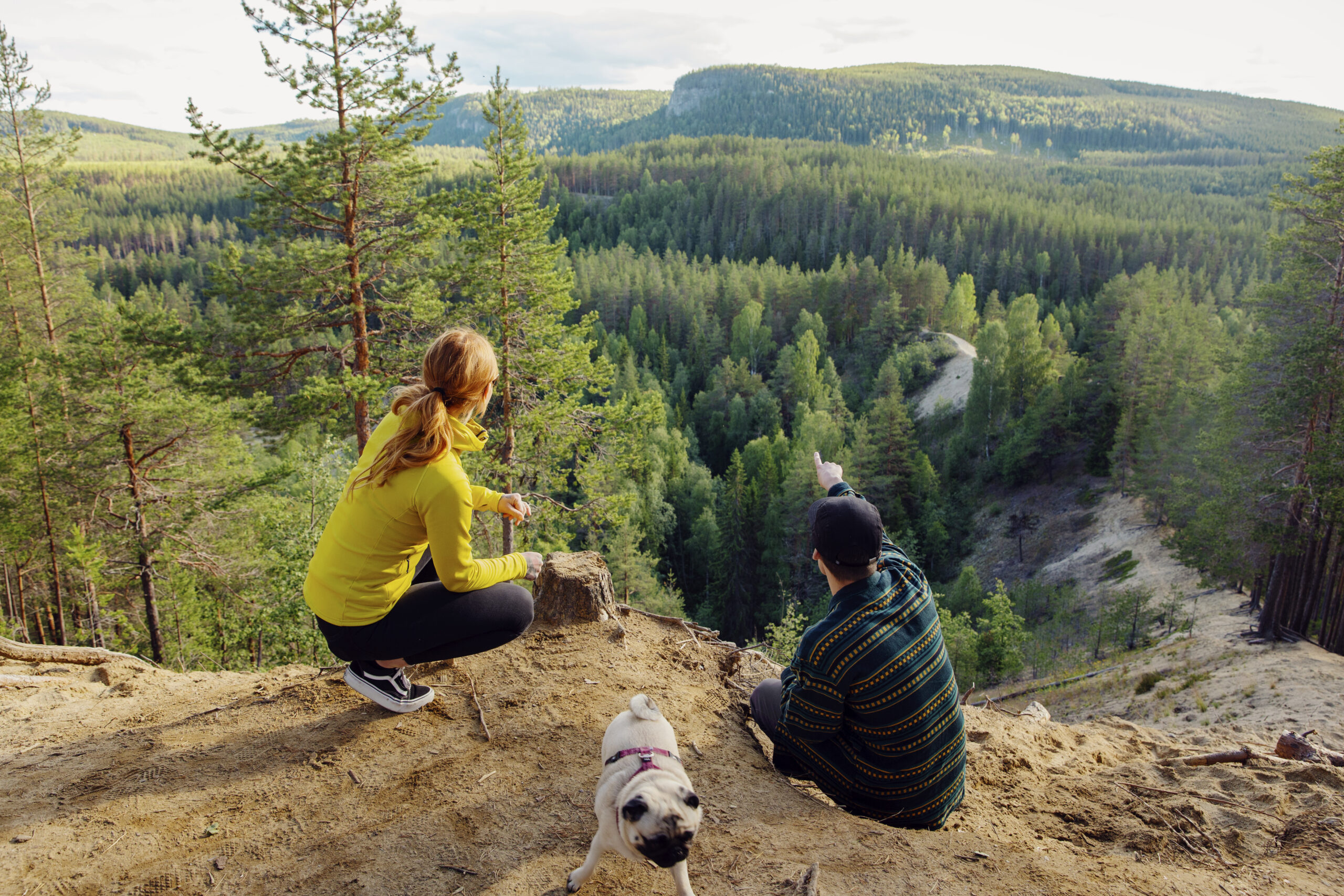 Two people and a dog out trekking, pauses and looks at the view of forest.